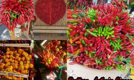 L'oro rosso della tavola: il peperoncino
