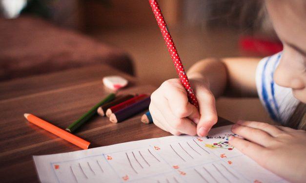Maestri di Strada: bando di selezione per l'assegnazione di n. 50 borse di studio per educatori