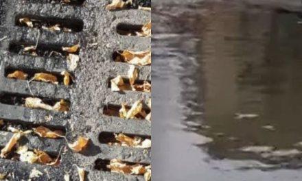 Casoria, tombini ostruiti e mancata pulizia delle strade: zone a rischio allagamento