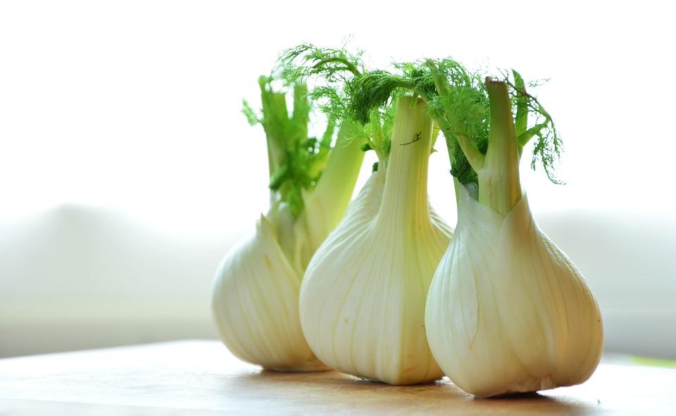 Il finocchio, toccasana naturale: favorisce la digestione e aiuta a dimagrire