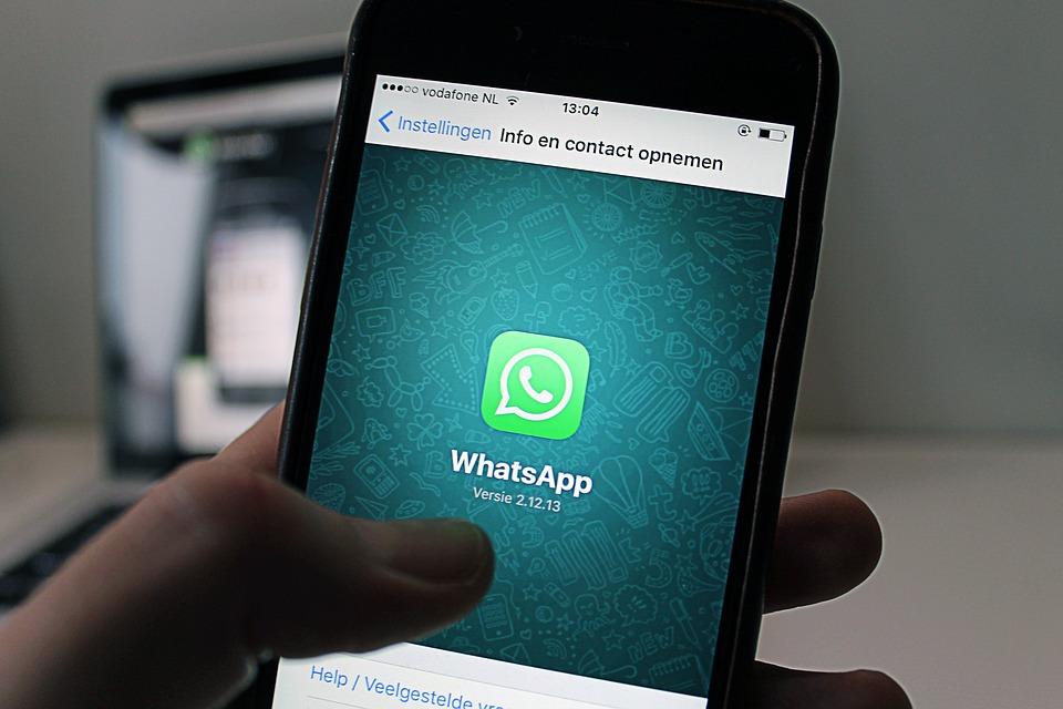 WhatsApp cancella chat, foto e video: ecco la procedura per salvarli