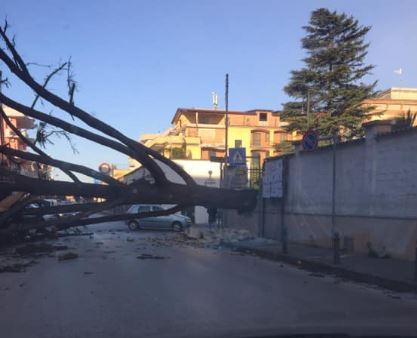 Forte raffiche di vento: disagi nell'area a Nord di Napoli