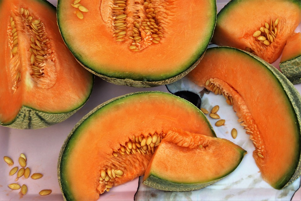 Il frutto dell'estate: il melone