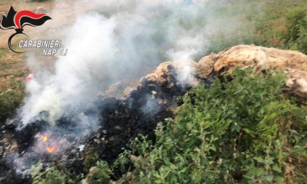 Sversamento di rifiuti a Napoli e Caserta: sequestri e controlli, 8 persone denunciate