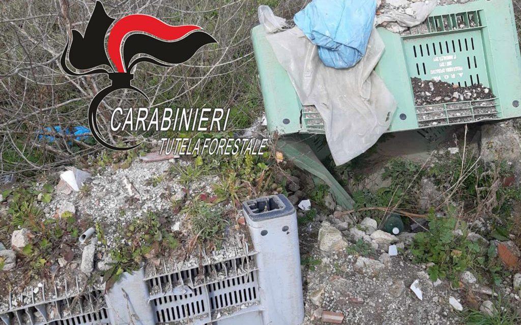 Scoperta discarica abusiva con rifiuti speciali a Pomigliano D'Arco