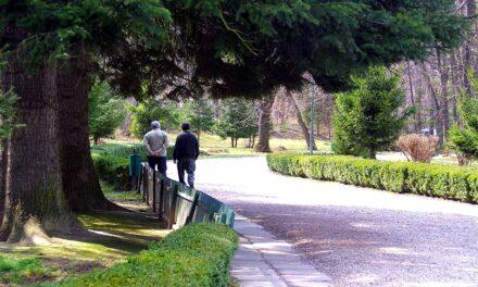 Divieto di camminare a piedi dopo le 20, l'ordinanza del sindaco di Cicciano