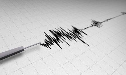 Sciame sismico di lieve intensità nei Campi Flegrei
