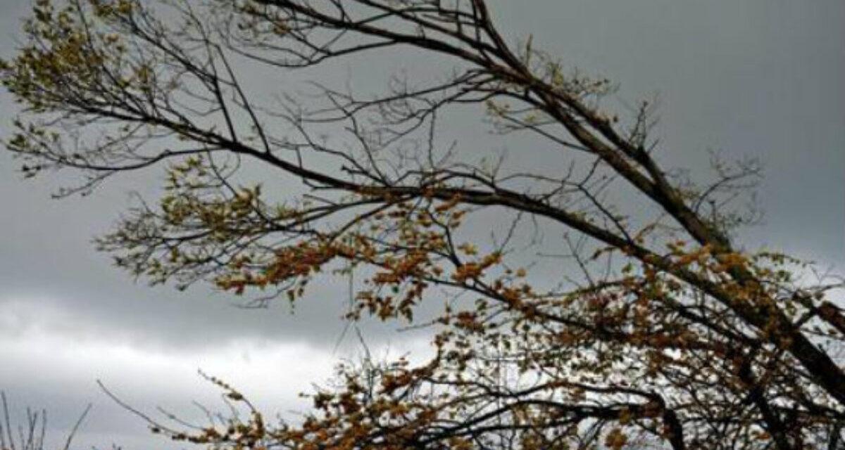 """Forte vento a Pozzuoli. Il sindaco Figliolia: """"Uscite il meno possibile di casa e limitate gli spostamenti"""""""