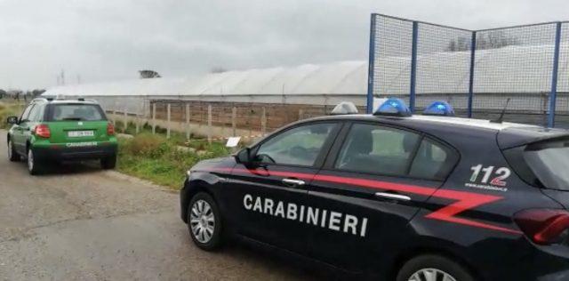 Inquinamento ambientale, sequestri e denunce ad Acerra e Casalnuovo