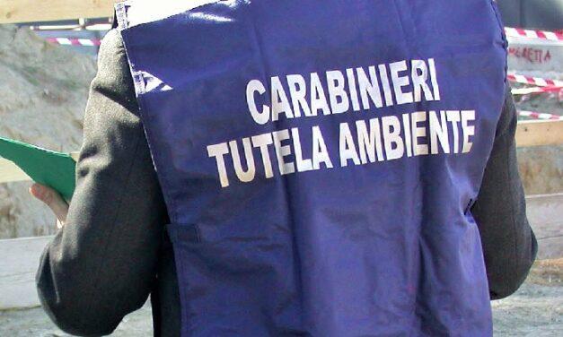 Controlli dei Carabinieri del NOE e dell'Agenzia delle Dogane nel porto di Napoli: sequestrati containers con carichi di rifiuti